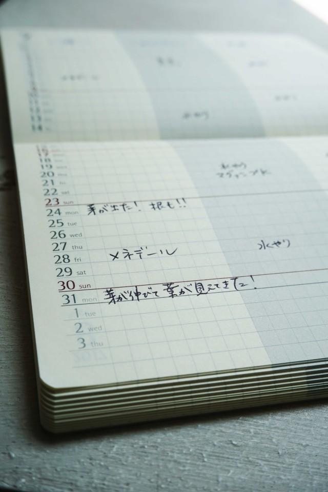 2sakura0731