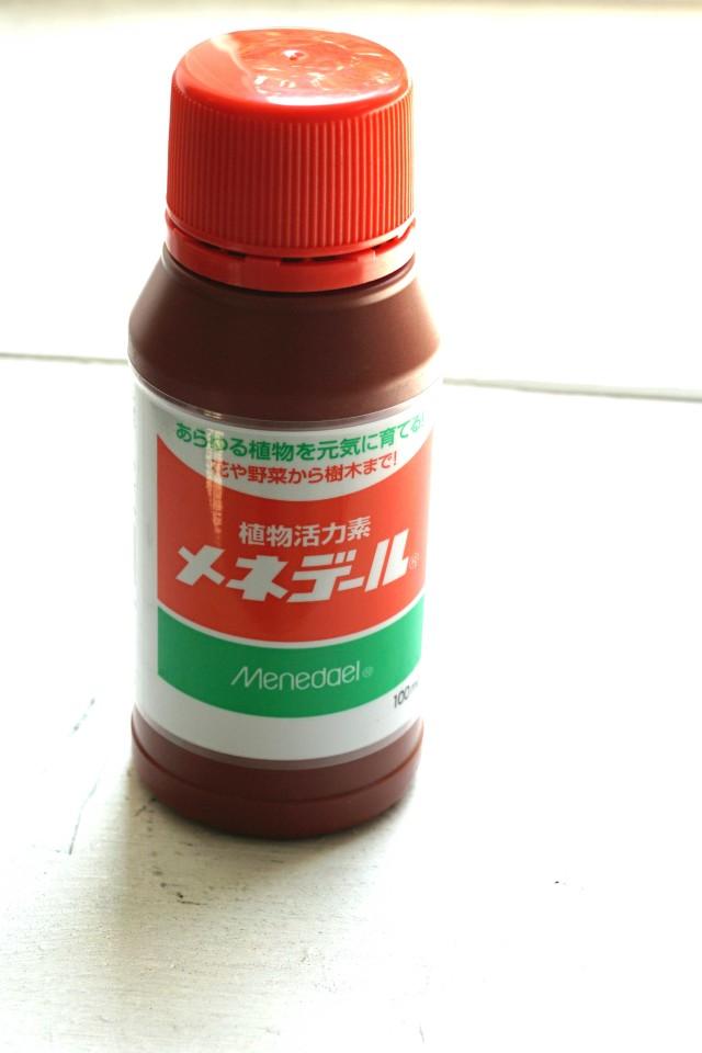4sakura0731